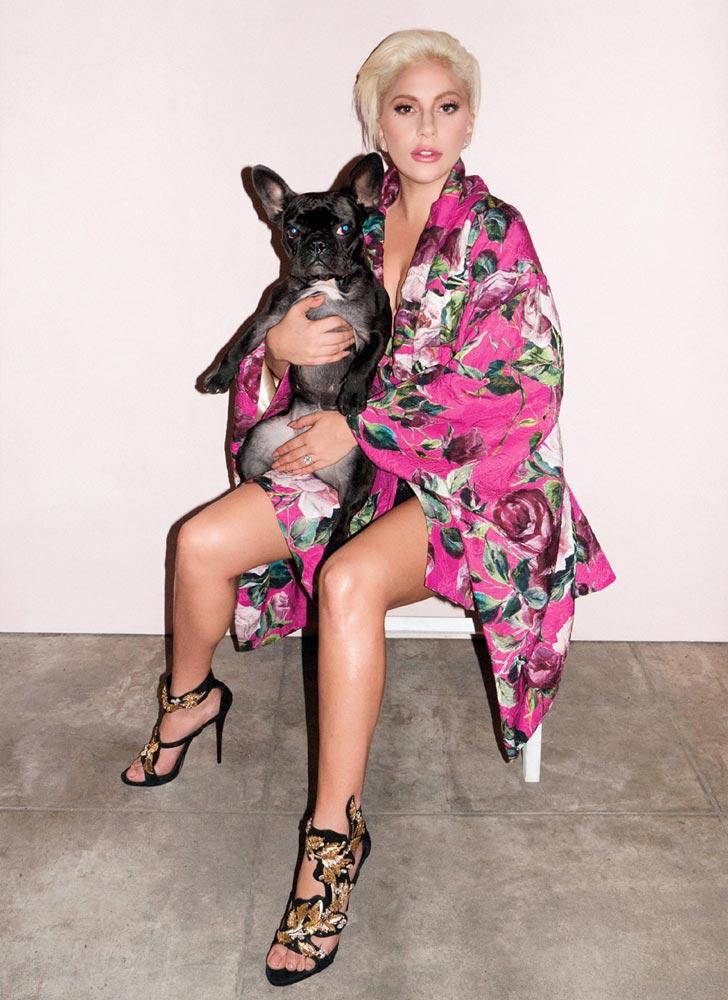 Lady Gaga and her pup Asia Kinney pose for V Magazine - News - Gaga ... Lady Gaga